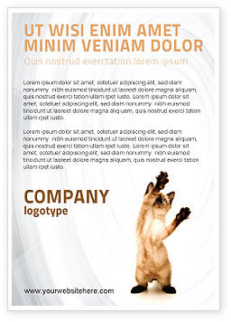 Agriculture and Animals: Kitten Ad Template #03459