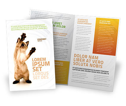 Kitten Brochure Template, 03459, Agriculture and Animals — PoweredTemplate.com