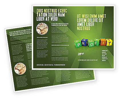 Income Brochure Template