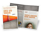 Consulting: Obstacle Brochure Template #04189