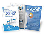 Consulting: Offshore Development Brochure Template #04271