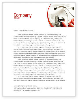 Phonendoscope In A Gray Red Colors Letterhead Template, 04712, Medical — PoweredTemplate.com