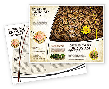 Desert Flower Brochure Template, 04901, Nature & Environment — PoweredTemplate.com