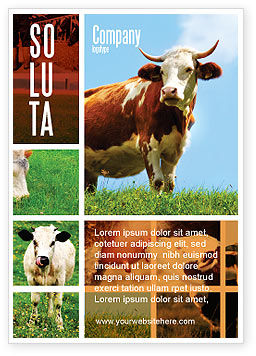 Cow Ad Template, 04991, Agriculture and Animals — PoweredTemplate.com