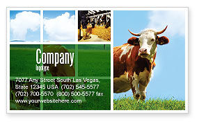 Agriculture and Animals: Koe Visitekaartje Template #04991