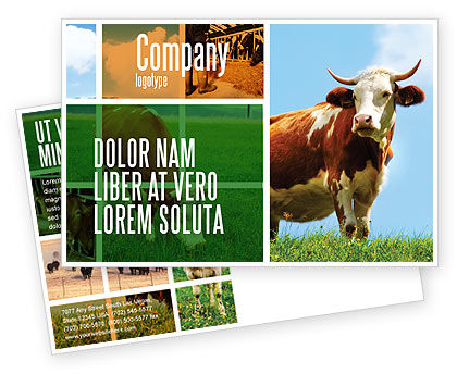 Cow Postcard Template, 04991, Agriculture and Animals — PoweredTemplate.com