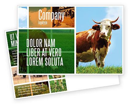 Agriculture and Animals: Modelo de cartão postal - vaca #04991