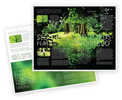 Pathway In The Forest Brochure Template
