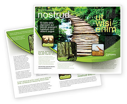 Wooden Path Brochure Template