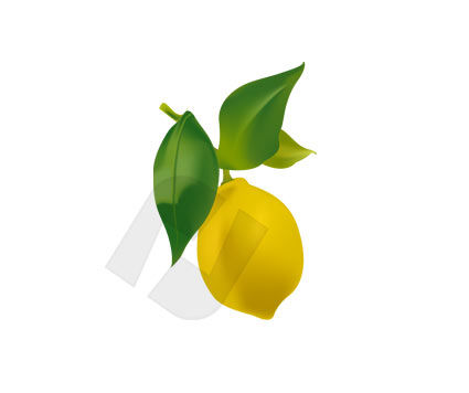 Citrus Vector Clip Art, 00172, Agriculture — PoweredTemplate.com