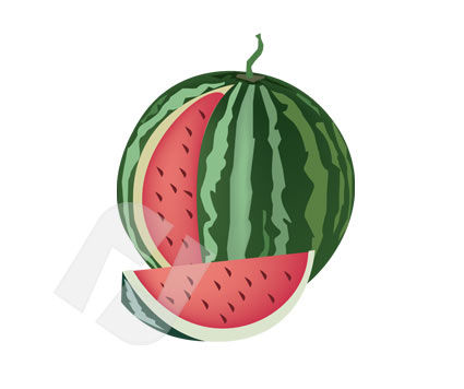 Agriculture: Water Melon Vector Clip Art #00193