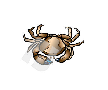 Animals and Pets: Crab Vector Clip Art #00239