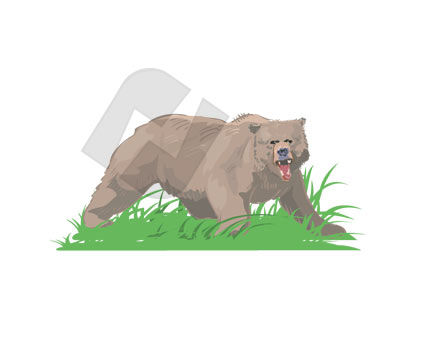 Animals and Pets: Grizzly Vector Clip Art #00242