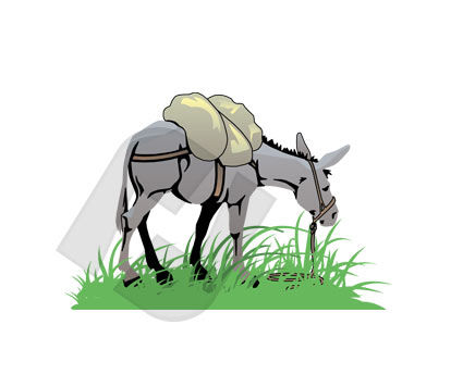 Animals and Pets: Donkey Vector Clip Art #00243