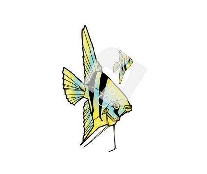 clip art fish. Tropical Fish Clipart #00250