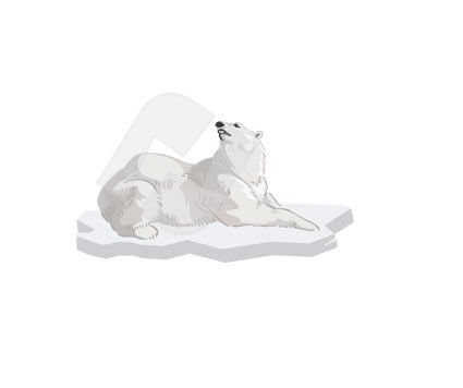 Polar Bear Vector Clip Art, 00317, Animals and Pets — PoweredTemplate.com
