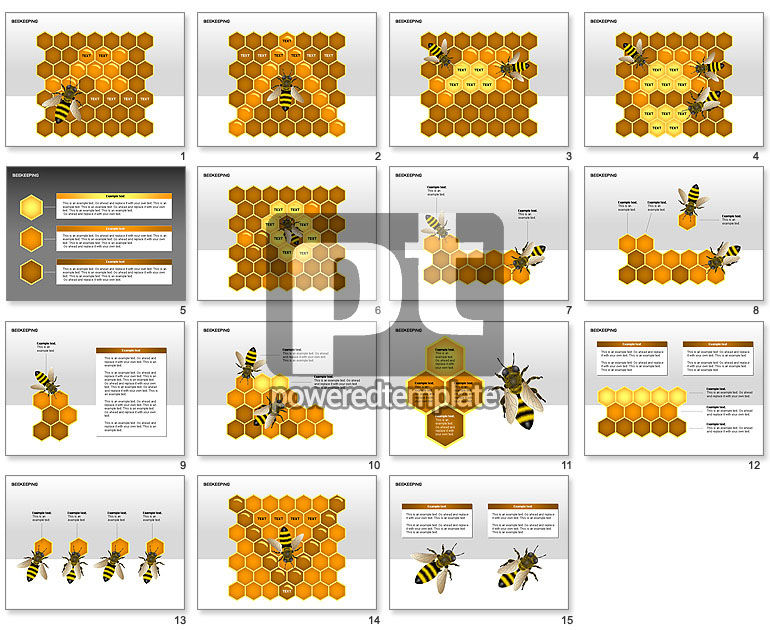 Bee Diagrams
