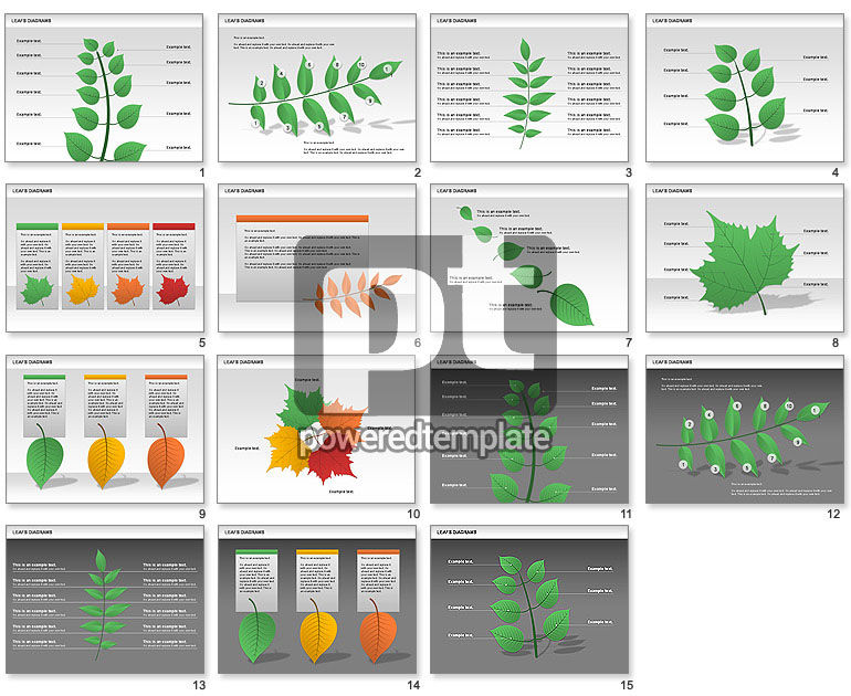 Leafs Diagram
