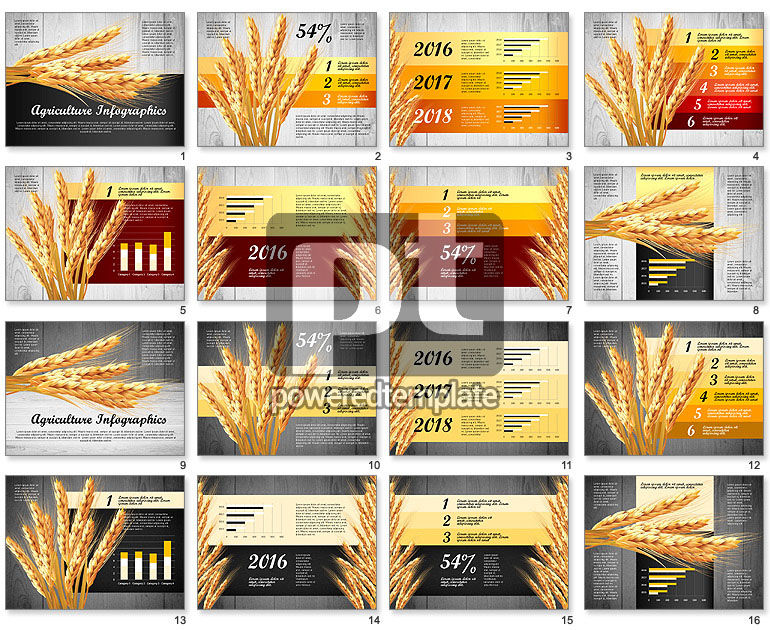 Agriculture Infographics Template