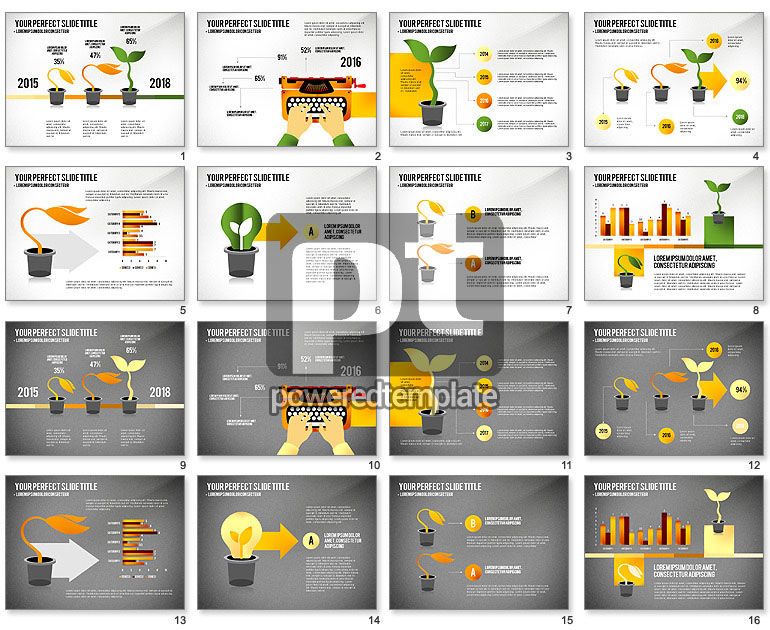 Growth Infographics Concept