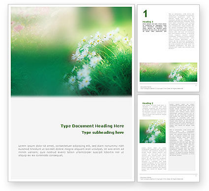 Nature & Environment: Spring Chamomiles Word Template #02105
