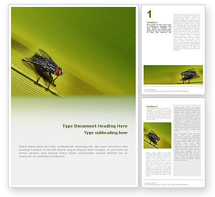 Nature & Environment: Sitting Fly Word Template #02235