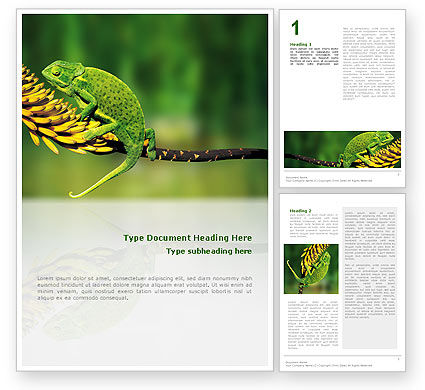 Chameleon Lizard Word Template