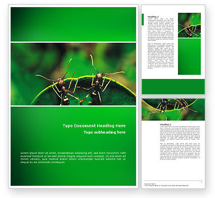 Ants Word Template, 02718, Nature & Environment — PoweredTemplate.com