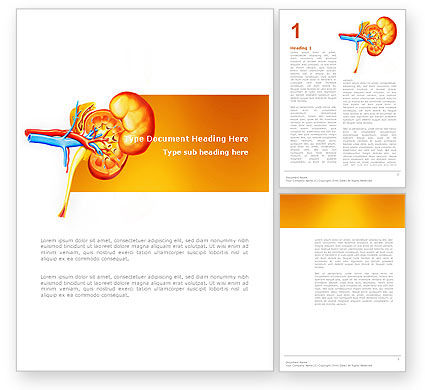 Medical: Kidneys Word Template #03275