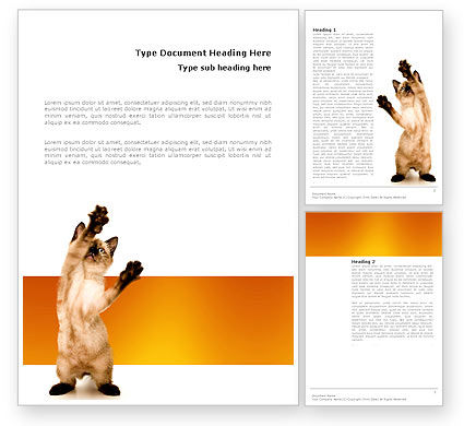 Kitten Word Template, 03459, Agriculture and Animals — PoweredTemplate.com