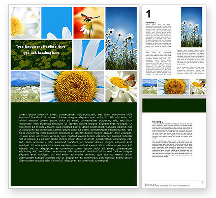 Camomile Field Word Template, 04752, Nature & Environment — PoweredTemplate.com