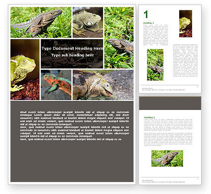 Iguana Word Template, 05414, Agriculture and Animals — PoweredTemplate.com