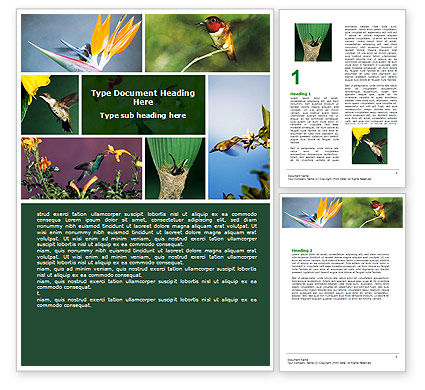Hummingbird Word Template, 06176, Agriculture and Animals — PoweredTemplate.com