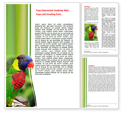 Australian Parrot Word Template, 06431, Agriculture and Animals — PoweredTemplate.com