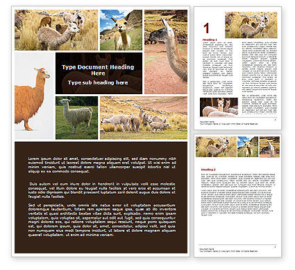 Free Lama Word Template, 06716, Agriculture and Animals — PoweredTemplate.com