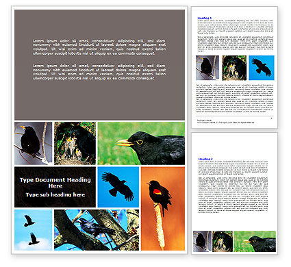 Free Blackbird Word Template, 06751, Agriculture and Animals — PoweredTemplate.com