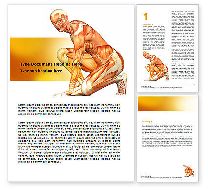 Muscles Of The Human Body Word Template, 06941, Medical — PoweredTemplate.com
