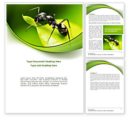 Ant Word Template, 08356, Education & Training — PoweredTemplate.com