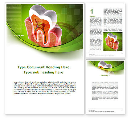 Tooth In Section Word Template, 08956, Medical — PoweredTemplate.com
