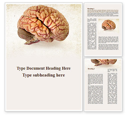 Human Brain As Anatomical Preparation Word Template, 09280, Medical — PoweredTemplate.com