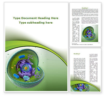Animal Cell Cut Away Word Template, 09366, Technology, Science & Computers — PoweredTemplate.com