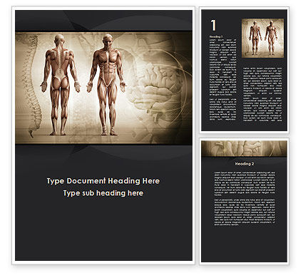 Male Body Anatomy Word Template, 09632, Medical — PoweredTemplate.com