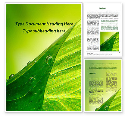 Nature & Environment: Green Leaf With Dew Word Template #09659
