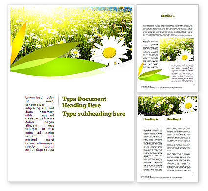 Ox-eye Daisy Camomile Word Template, 11157, Nature & Environment — PoweredTemplate.com