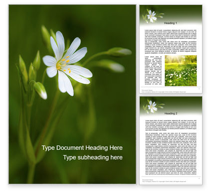 Nature & Environment: White Flower Close-up Word Template #15619