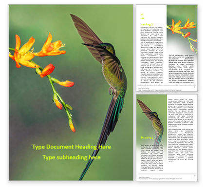 Nature & Environment: Brown Hummingbird Near Red Petaled Flower Word Template #15777