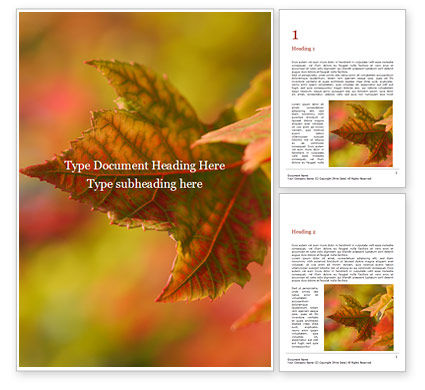Nature & Environment: Autumn Maple Leaves Word Template #15881