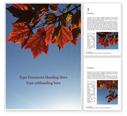 Nature & Environment: Maple Tree Branch in Autumn against Blue Sky Word Template #15911