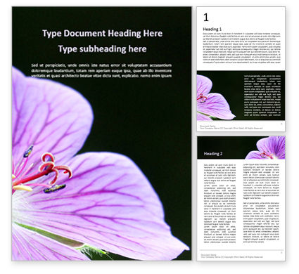 Nature & Environment: Violet Malva Flower Closeup Word Template #15943