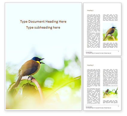 Nature & Environment: The Blue-Crowned Laughingthrush Among Tree Leaves Word Template #15954